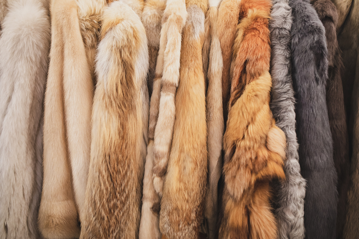 Image of fur coats on a rack.